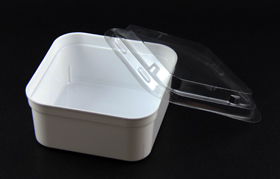 disposable salad bowl
